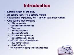Human Anatomy Integumentary System Human Anatomy Integumentary System Introduction Largest Organ Of