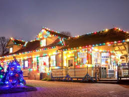 festival of lights and tree sales illuminates cosley zoo wheaton