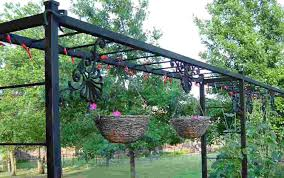 Trellis With Vines Pergola Grape Vine Trellis Remarkable Grape Vine Trellis Wire