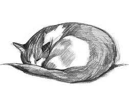 cat drawing etsy