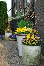 Flower Boxes That Thrive In by 1728 Best Flower Boxes Flower Pots And Planters Images On