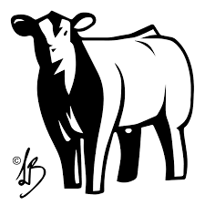 steer design contest the showtimes junior livestock magazine