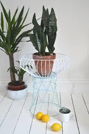 unique fruit bowl basket case 5 ways to style use u0026 love a geometric fruit bowl