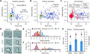 biophysical isolation and identification of circulating tumor