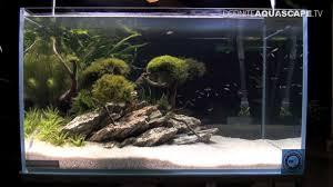 Aquascape Aquarium Designs Aquascaping Aquarium Ideas From Zoobotanica 2013 Pt 6 Youtube
