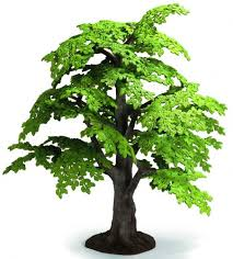 new schleich tree collecting animal figures schleich et al