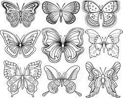 outline drawing of a butterfly hand drawing butterfly vector
