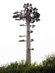 false tree mobile phone mast naturalizing humans