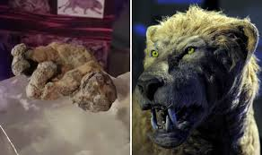 scientists clone ice age lions finding u0027perfect u0027 frozen cubs