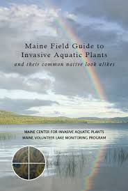 invasive aquatic species resources maine volunteer lake