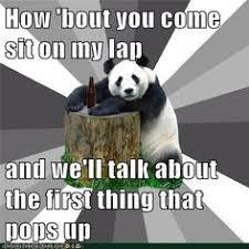 Pick Up Line Panda Meme - panda pick up lines look who made a funny pinterest panda