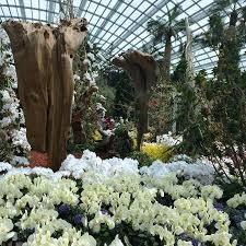 taman indoor picture of gardens by the bay singapore tripadvisor