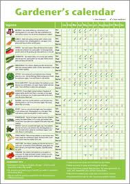 a3 novice gardener u0027s beginner u0027s vegetable growing gardening
