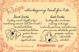 and bad thanksgiving foods for your tails