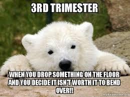 Coke Bear Meme - 16 best pr3 middle school memes images on pinterest middle school