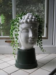 buddha head planter succulent plant pot concrete cement home and