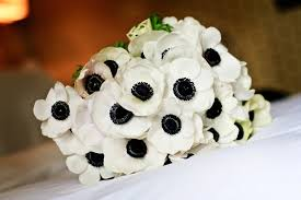 anemones flowers la fleur vintage your flowers