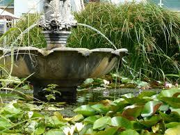 Ventnor Botanic Gardens Ivisit Ventnor Botanic Garden Ivisit