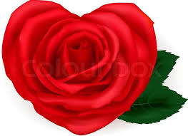 roses and hearts greeting card with hearts made from roses vector