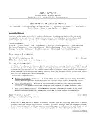good marketing resume sample resume format for marketing profile resume samples types of