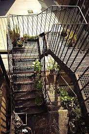38 best fire escape plants images on pinterest plants facades