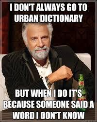 Meme Dictionary - funny meme urban dictionary http whyareyoustupid com funny meme
