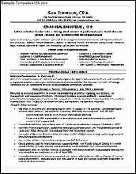 cfo resume exles cfo resume exles pointrobertsvacationrentals