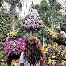 Ny Botanical Garden Membership All The Pretty Flowers At The Nybg Orchid Show Malikah