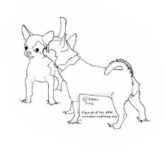 coloring pages chihuahua puppies 34 best digi sts doggies images on pinterest coloring books