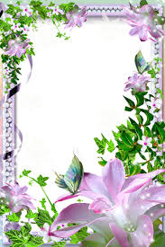 beautiful transparent photo frame with flowers gallery