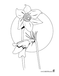 anemone coloring pages hellokids com