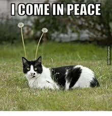 Peace Memes - pics awwmemes com i come in peace memebinge com 39