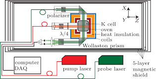 spin dynamics of the potassium magnetometer in spin exchange