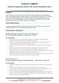 Resume Sample For Computer Programmer Sample Resume Programmer Sample Resume Computer Engineer