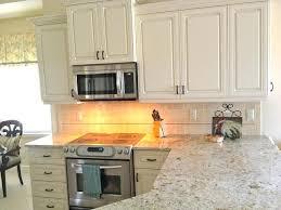 kitchen cabinets naples fl kitchen kitchen cabinet naples florida small condo traditional