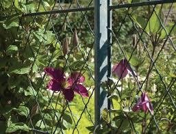 Diamond Trellis Panels 34 Best Garden Trellis Lattice Fencing Images On Pinterest