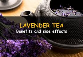 lavender tea benefits and side effects of lavender tea