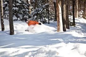 2016 17 canadian ski resort opening dates snowbrains
