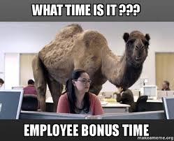What Time Meme - what time is it employee bonus time hump day camel make a meme