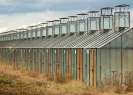 old greenhouse building with colored walls stock photo picture