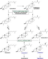 comprehensive assessment of transcriptional regulation facilitates