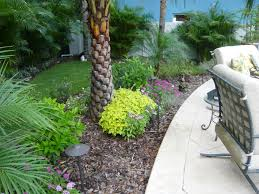 mosquito misting system in tampa florida buzzoff mosquito