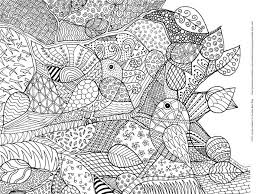 bird coloring pages to print 6447 best printables images on pinterest coloring books