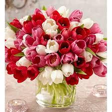 tulip bouquets sweetest tulips 60 stems angel gardens florist
