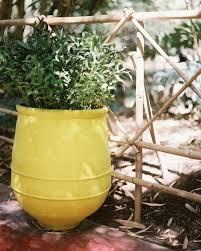116 best gardening creating a children u0027s garden images on