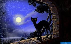free halloween wallpaper downloads black cat halloween wallpaper tianyihengfeng free download high