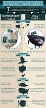 good thanksgiving restaurants 9 best thanksgiving infographics images on pinterest happy