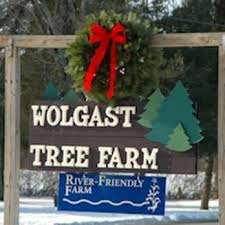 wolgast christmas tree farm christmas trees 176 bennets ln
