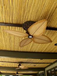 Outdoor Patio Ceiling Ideas by Best 25 Bamboo Ceiling Ideas On Pinterest Bamboo Roof