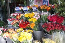 flower shops in flower shops of flirty fleurs the florist
